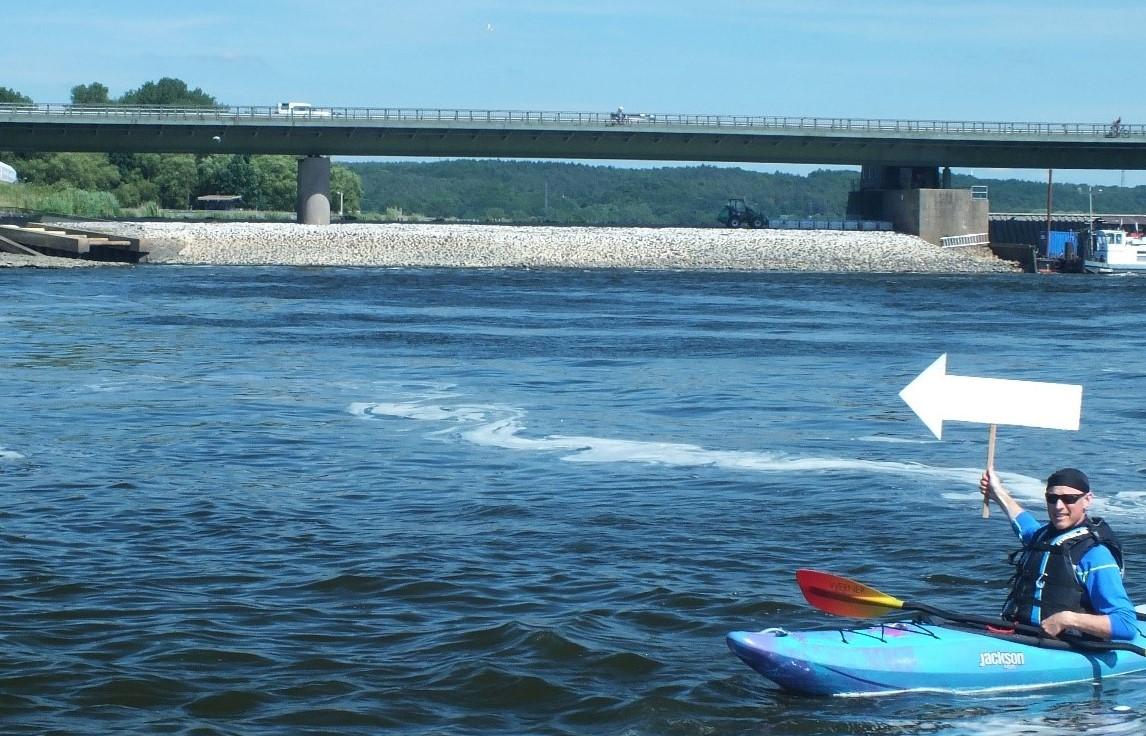 FUTURE 4 FISHES – die Elbe muss passierbar sein
